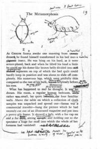 L'insetto di Kafka disegnato dallo scrittore Vladimir Nabokov
