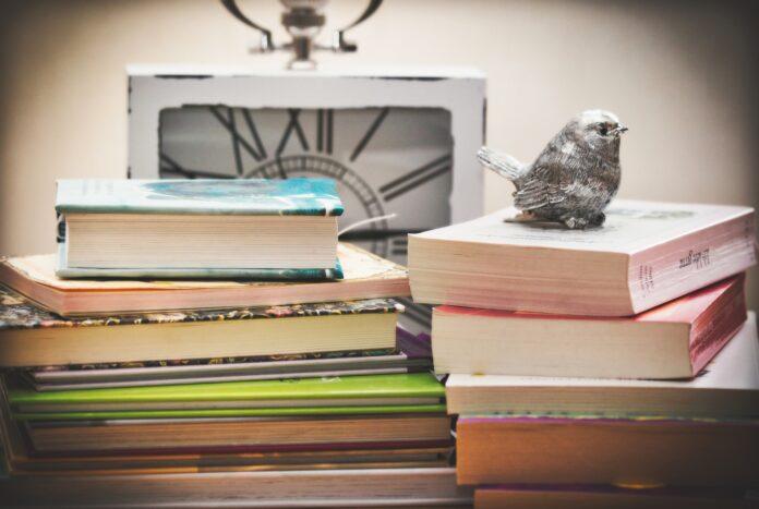 Mi libro in volo - Consigli dagli autori